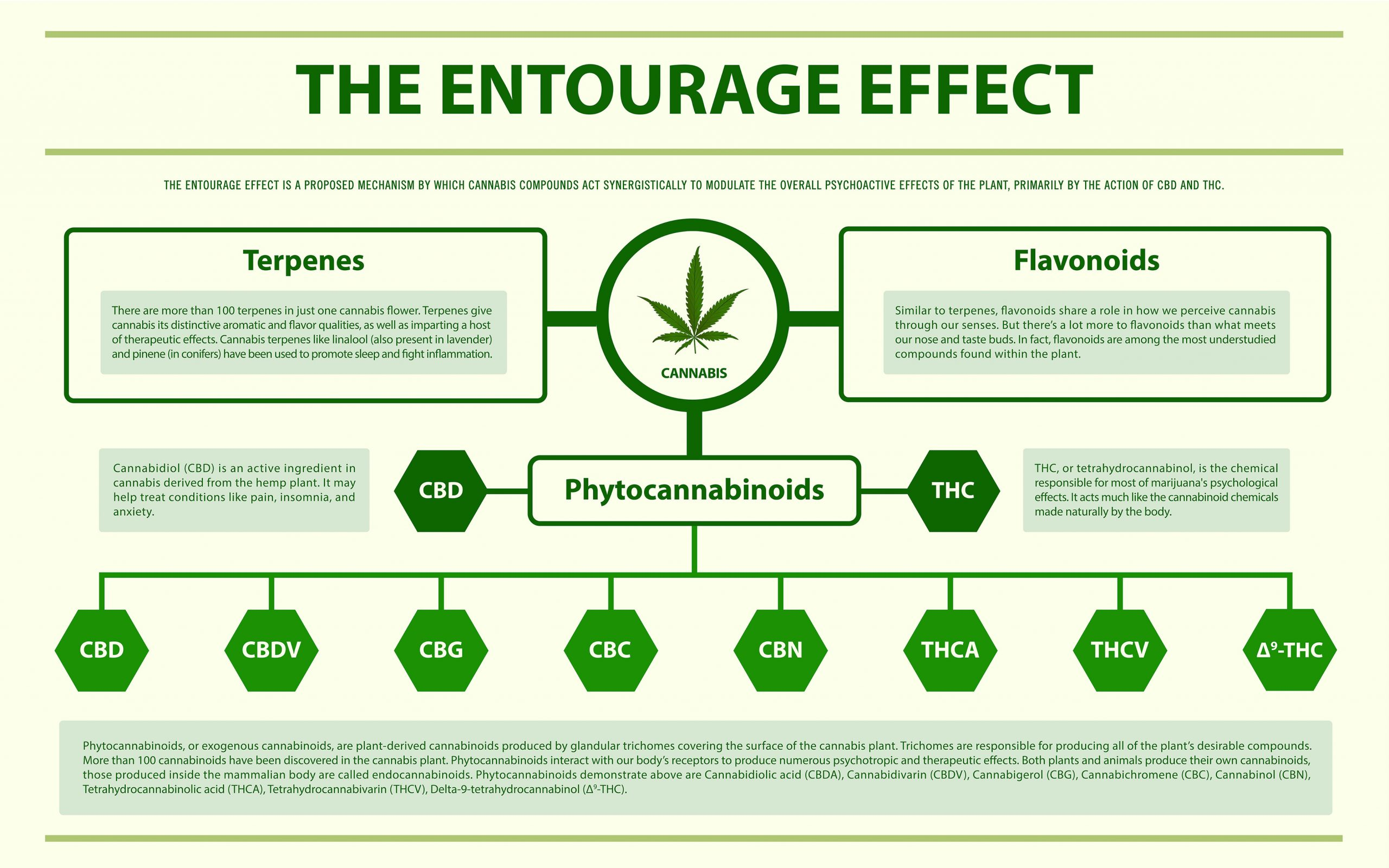 Entourage Effect Weed